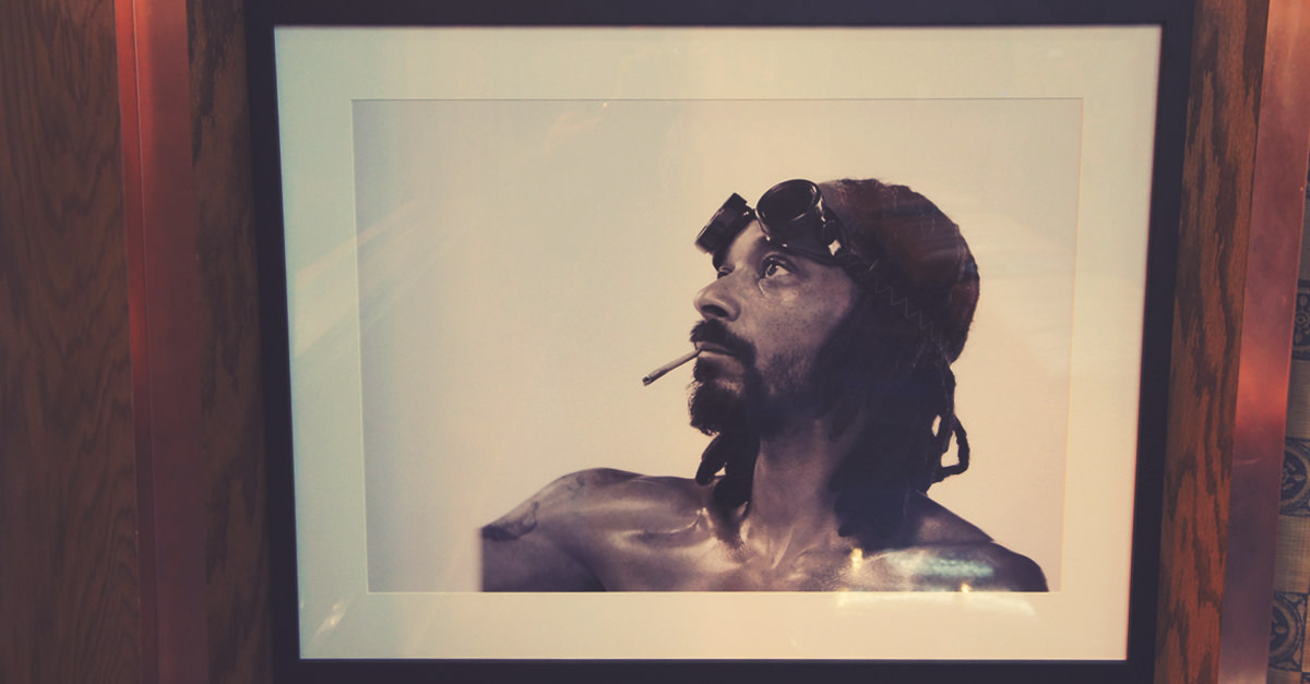 Photo On Display At ShowGrow, a Dispensary/Art Gallery